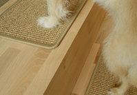 BELLOstepsR Stufenmatten Fur Hunde